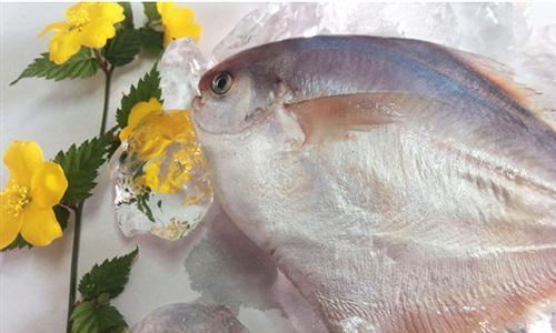 鲳鱼 万斛食品(图) 潍坊鲳鱼批发