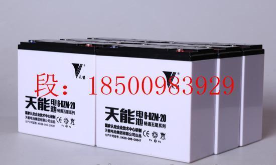 天能电池胶体 TNG 100铅碳储能电池TNC 管式OPzV150