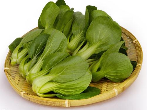 广东专业的蔬菜配送 珠海蔬菜配送