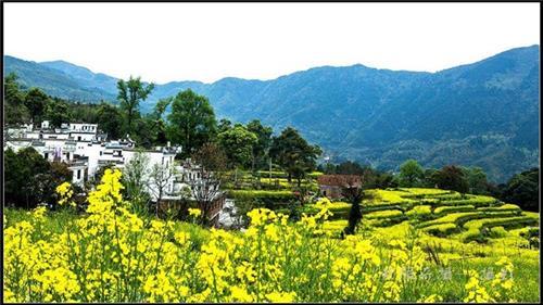 渭南农业观光|陕西观源景观设计|渭南农业观光主题策划