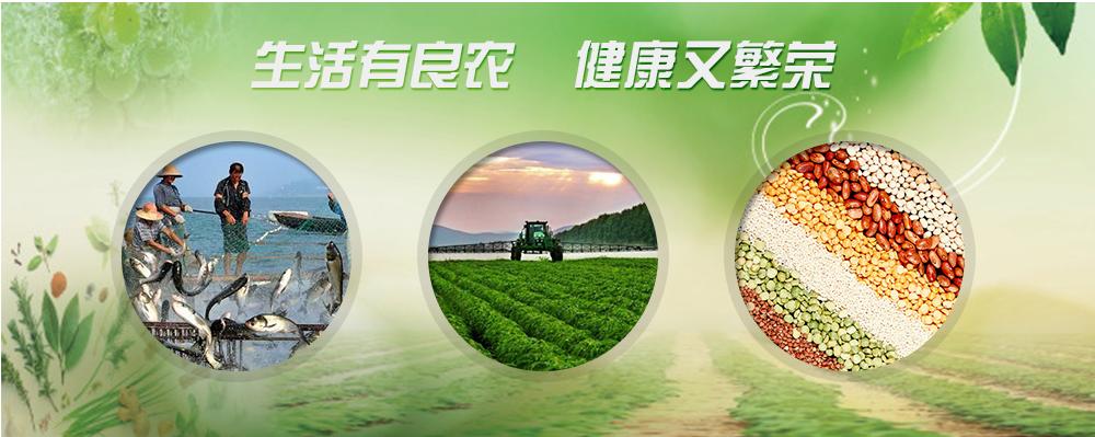 河南山洋乳业有限公司