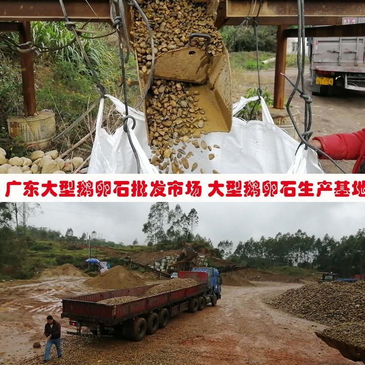 深圳河卵石厂家 深圳鹅卵石厂家 宝安天然鹅卵石批发基地