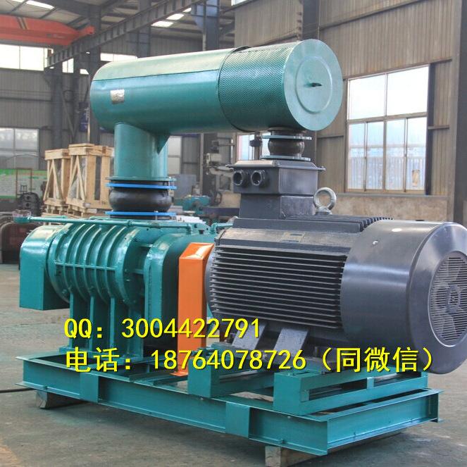 鑫华东HDSR100菏泽氧化风机厂家