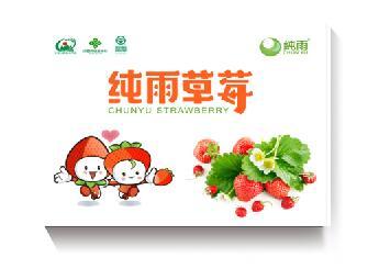 德昌纯雨草莓1250g 露天种植 现采现摘 纯天然 无污染草莓