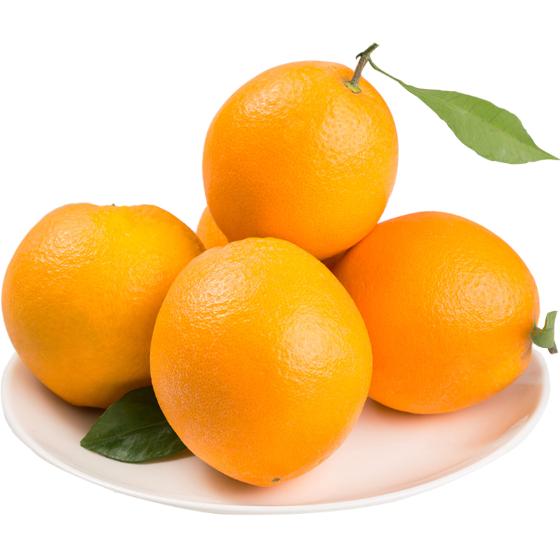 【东源果业】赣南脐橙特级果批发供应新鲜橙子