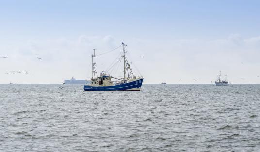 现代捕鱼的方式(二)