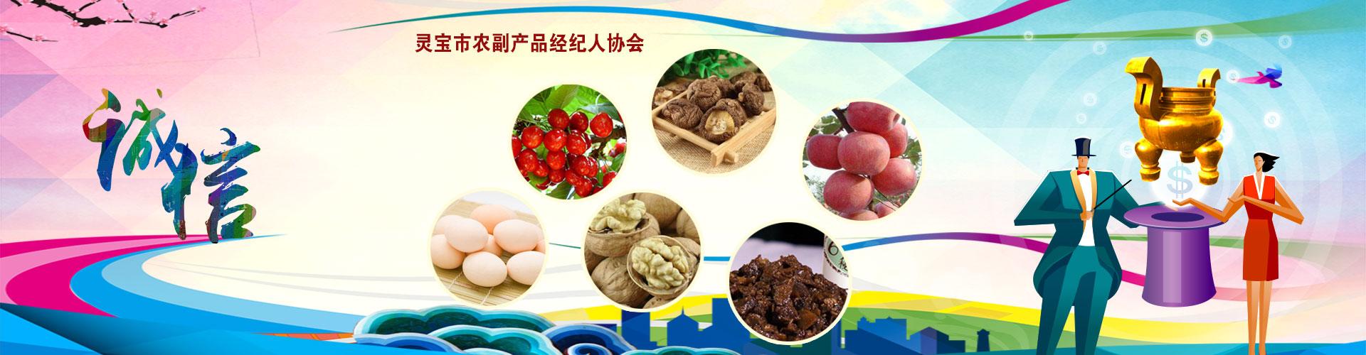 农副产品经纪人协会
