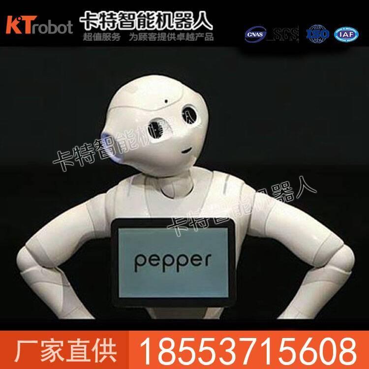 现货黑豆商务机器人价格 黑豆商务机器人直销 智能机器人
