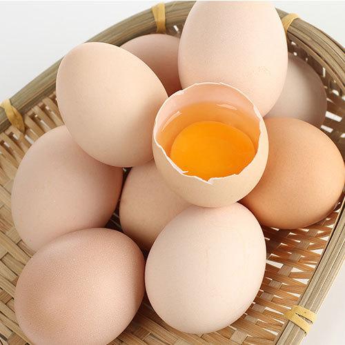 【丰宁馆】散养土鸡蛋 10枚礼盒装