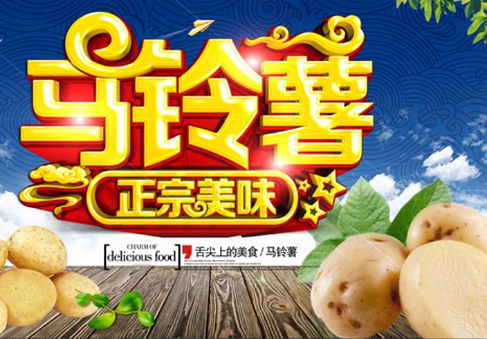 马铃薯04