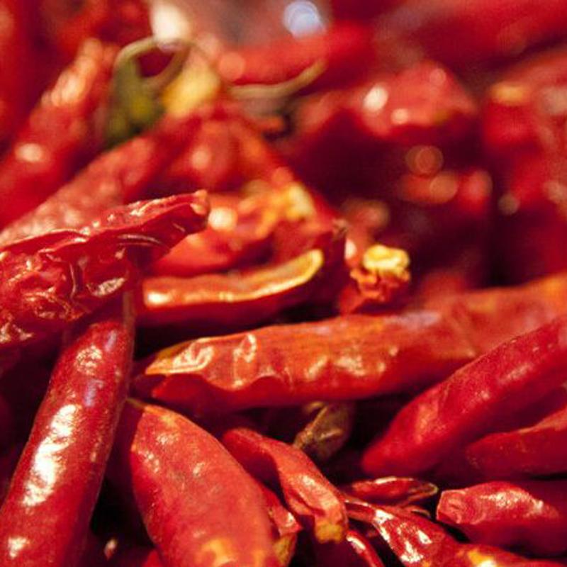 辣椒产业是一门全球生意