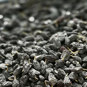 黑加仑天然无核无添加葡萄干500g孕妇食品新疆特产