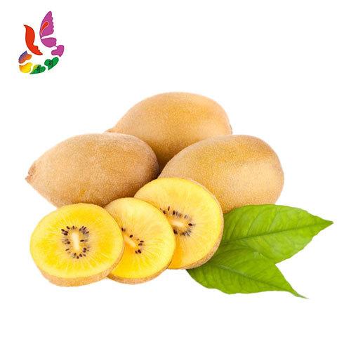 奇莉果业 供应陕西渭南 金艳猕猴桃 产地直供 新鲜直发 12颗装 (4.5斤-5斤)