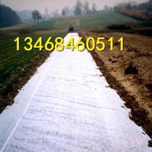 绿化育苗无纺布 水稻育秧无纺布生产厂家价格