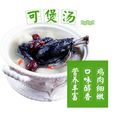 略阳生态乌鸡林间散养土鸡乌鸡批发产地直供量大从优公鸡