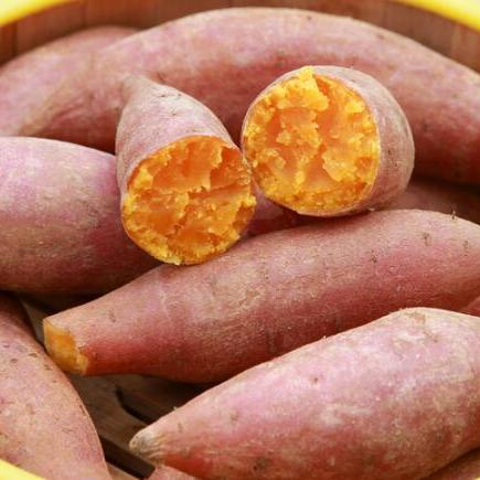 供应 2018年现挖新鲜红薯沙地红薯金手指小红薯板栗薯山芋番薯地瓜5斤