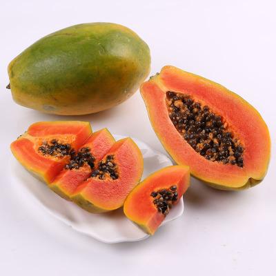 供应 新鲜海南红心木瓜夏威夷水果青木瓜