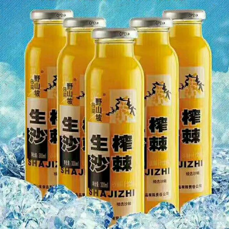 沙棘汁300毫升 好喝助消化的沙棘饮料批发
