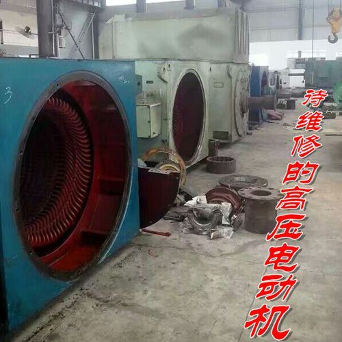 重庆维修赛力盟YRKK900高压交流电动机
