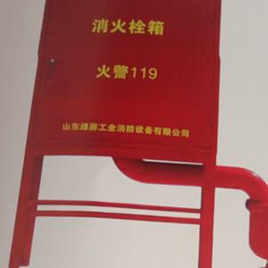 供应山东省东营市自泄式防冻型室外箱式消火栓  SGW32