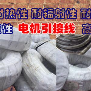 重庆贵州四川省市销售电机引接线