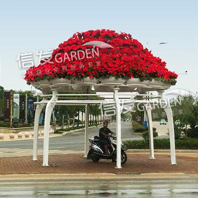 供应大型铁艺花架 花盆容器公园广场造型 水母花厅