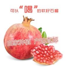 【现摘现发】河阴石榴 12颗装单颗8两 新包邮鲜当季水果软籽整箱批发