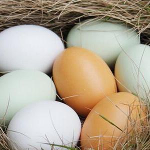 供应 农家有机鸡蛋