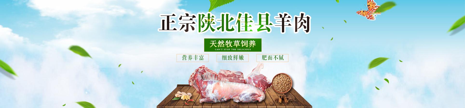 佳县瑞兴种羊