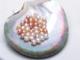 供应 AAA无暇水滴形天然养殖淡水珍珠散珠 米形半孔无孔裸珠