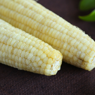 供应 速冻甜糯玉米