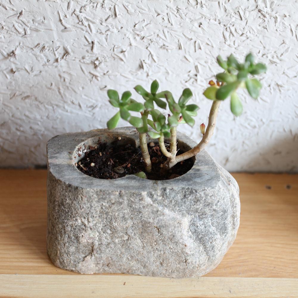 创意石头花盆花岗岩多肉菖蒲绿植水仙盆栽花器