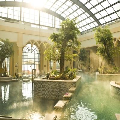 煜林枫外观美观质量可靠休闲温室