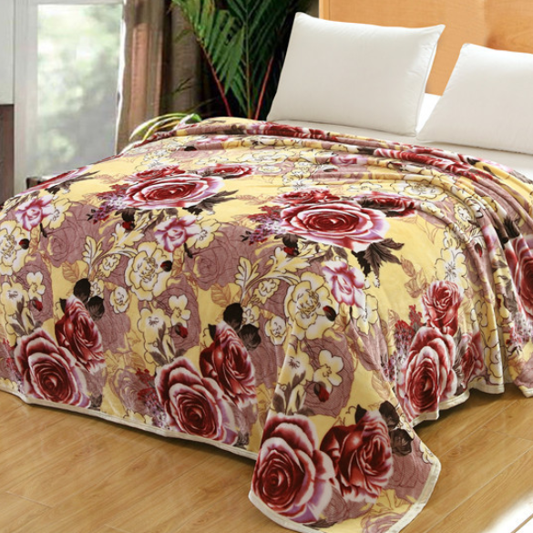供应 厂家特价定制批发云貂绒毯子 冬季加厚保暖婚庆毛毯