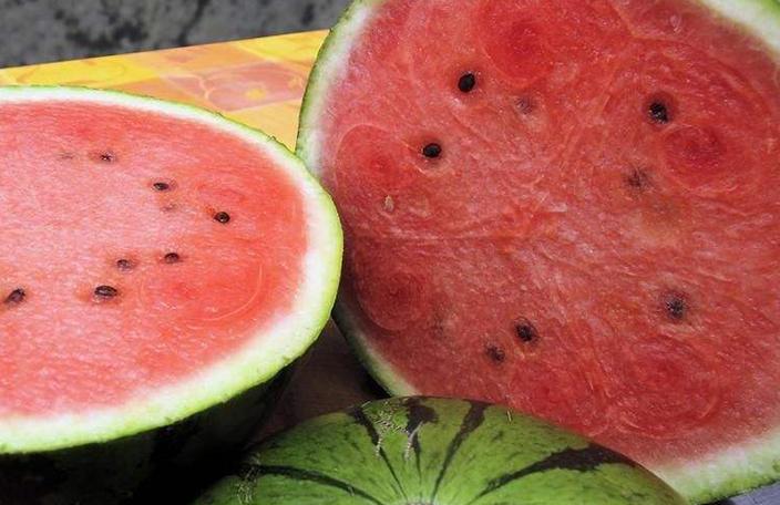 海南西瓜产业发展
